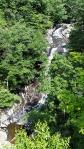 Whiteoak Canyon Trail