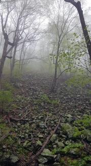 004_LittleDevilsStairs_hike